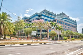 31 International Business Park [1]